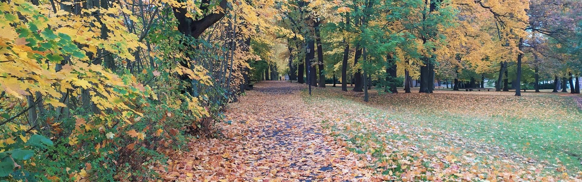 Herbstspaziergang im Park in Neustadt an der Orla ©Mandy Käßner