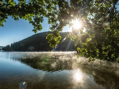 Es ist die Bleilochtalsperre, die 215 Millionen Kubikmetern Saale-Wasser fasst und auch ein Touristenmagnet ist. ©Regionalverbund Thüringer Wald