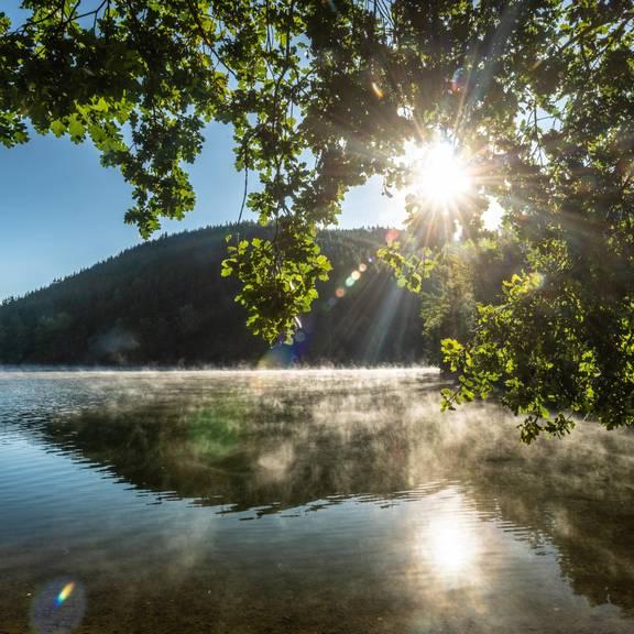 Es ist die Bleilochtalsperre, die 215 Millionen Kubikmetern Saale-Wasser fasst und auch ein Touristenmagnet ist.